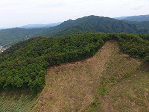 林業 ドローン